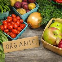 الطعام العضوي- what is organic food?