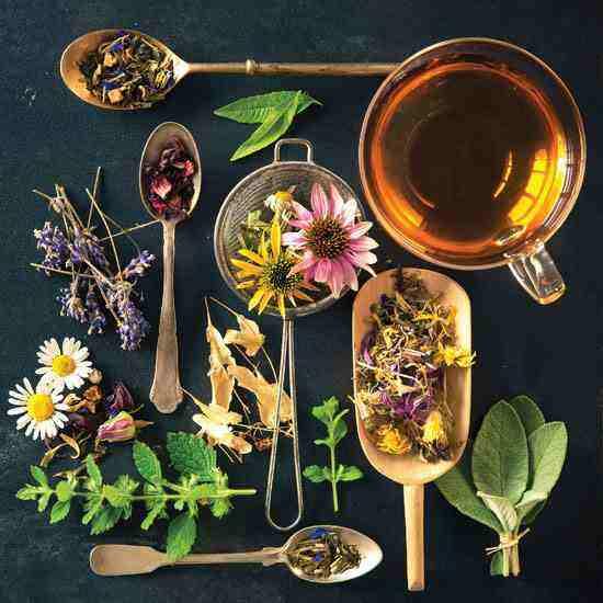 herbal-teas jpg